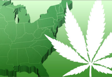 East Coast catching up with West Coast on cannabis